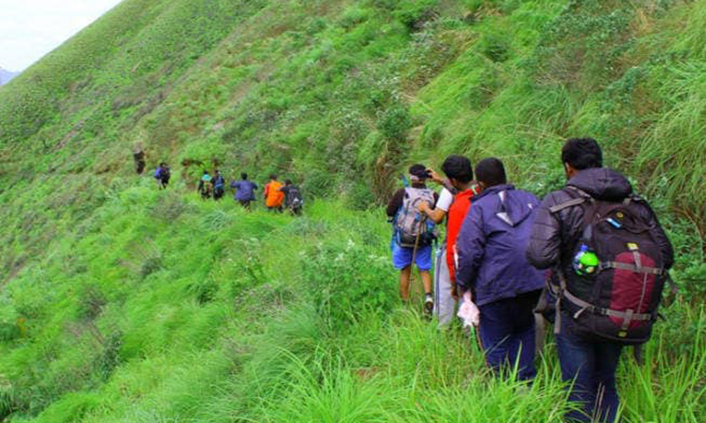 The individuals who visit Munnar in Kerala can likewise enter the journeying course by strolling down the thick woods and plain fields. It takes four to five hours to finish the journey from Kurangani-Rengha Holidays