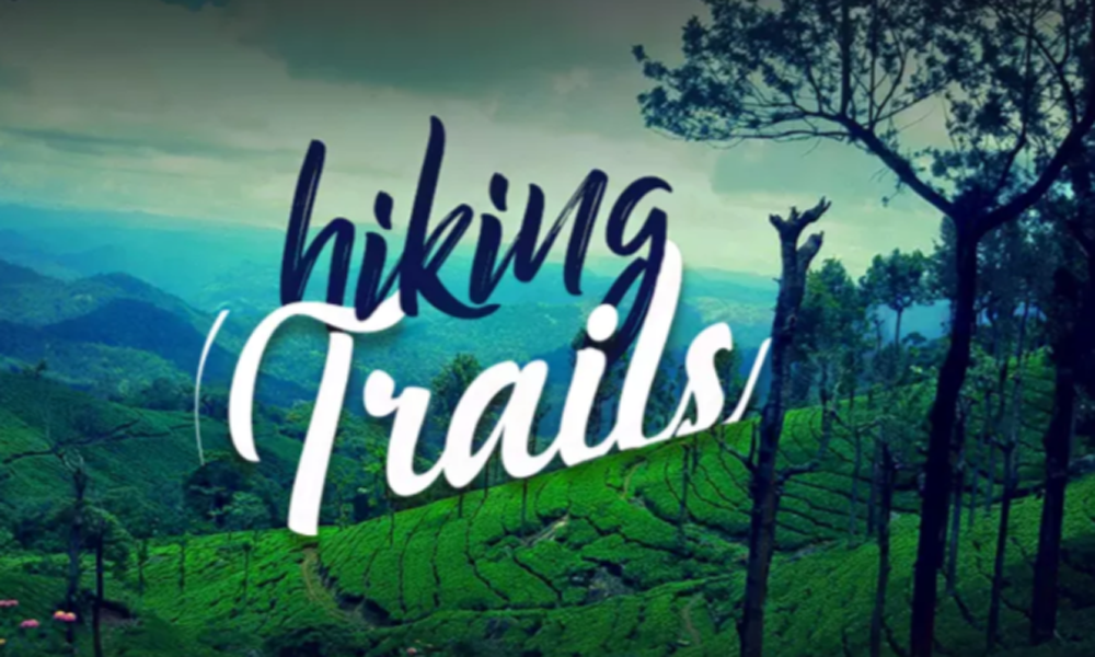 Kurangani ,Theni.hiking Trails  trail is typically a road, track, or unpaved path. Path or footpath is a preferred term for a walking trail in the kurangani. The term also refers to roads along rivers-Renga Holidays