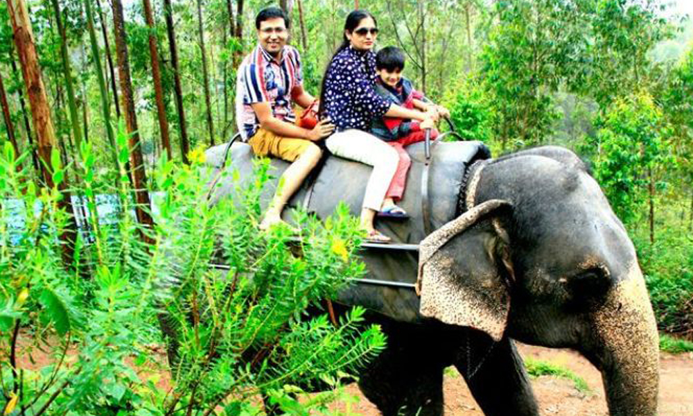 kurangani ,Theni.Carmelagiri Elephant Park is an elephant private park that runs through the hilly paths of the kurangani , part of tourism in Kerala, Tamilnadu,.amazing ride elephant its amazing expe-Rengha holidays