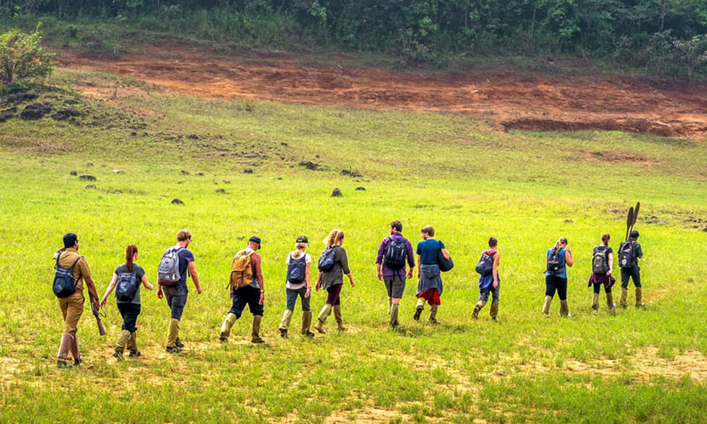 Kurangani,Thekkady.Border Hiking A trekking program conducted into the wilderness, border hiking is  and also by the Forest Department of the region. -Rengha Holidays