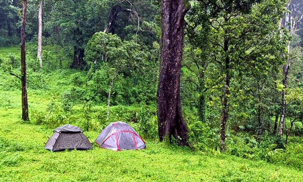 Kurangani .Thekkady,Trekkers Paradise: GaviTrekking to Gavi is one of the most popular activities in Thekkady that tourist opts for. This place is a true paradise for adventure seekers, as it not only-RENGHA HOLIDAYS