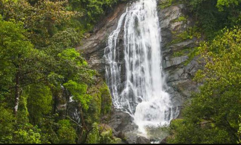 KURANGANI.MUNNAR, Atukkad WaterfallsNestled 2 km away from Munnar amidst beautiful hills and lush green jungles, this pristine waterfall makes for romantic escapades and picnics site. However, the roa-RENGHA HOILDAYS
