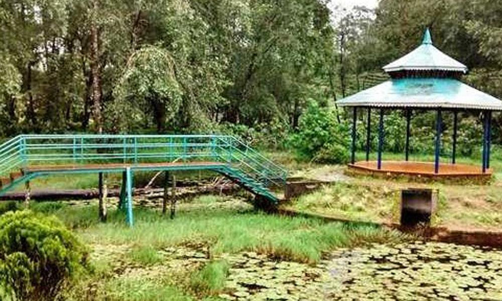 Kurangani,MUNNAR Blossom Park The park consists of a vast expanse of gardens and lawns with a variety of flora. There are also tree houses, ropeway and artificial waterfalls to kindle yours and your k-RENGHA HOLIDAYS