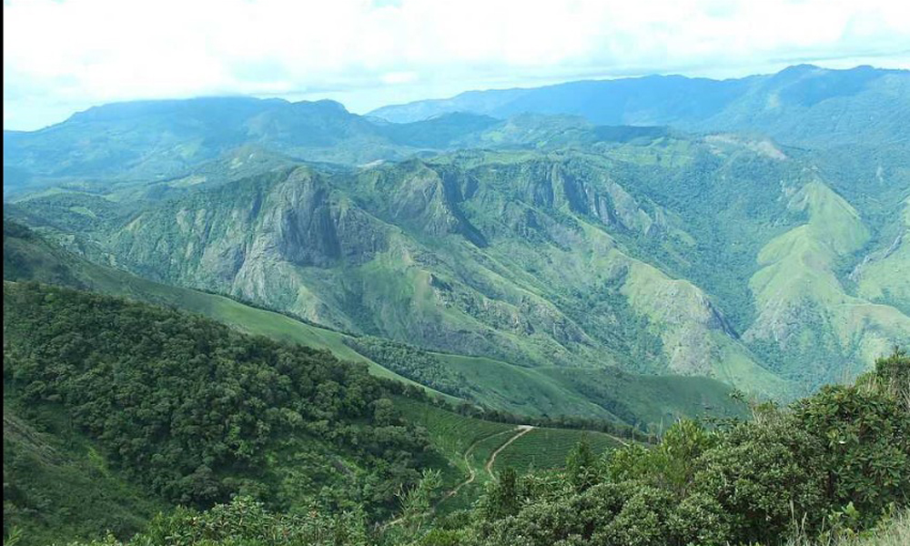 Kurangani,MUNNAR Meesapulimala stands elevated at an altitude of 2641 meters (8660 feet ) above sea level. The densely covered terrain has eight peaks that together resemble a moustache and is, theref-RENGHA HOLIDAYS
