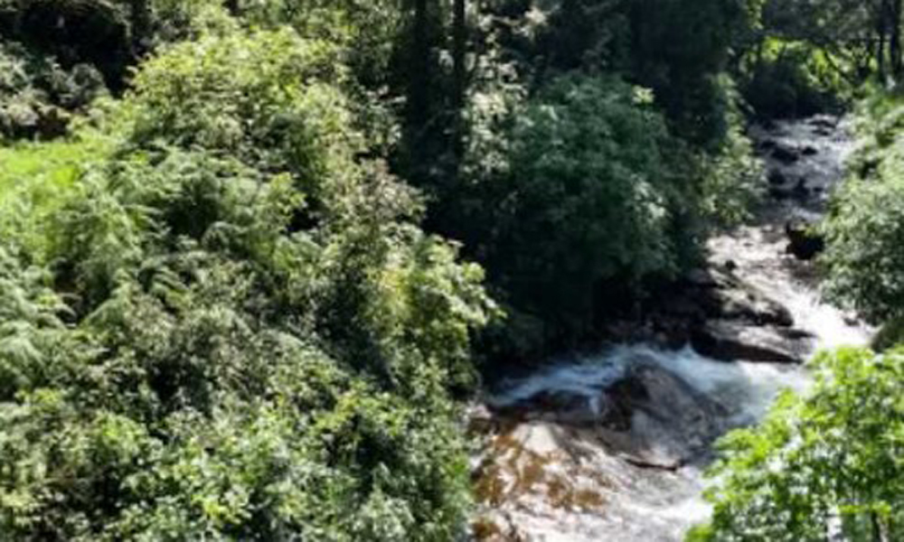 Kurangani ,MUNNAR Nyayamakad Waterfalls Nyayamakad Waterfalls is situated 10 kms from Munnar between Munnar and Rajamala in Kerala. Falling down at a height of 1600 m, the waterfalls are a popular pic-RENGHA HOLIDAYS